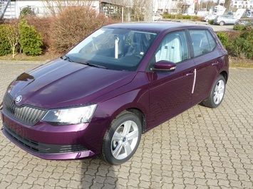 Skoda Fabia Cool Edition LM Räder Bluetooth etc.